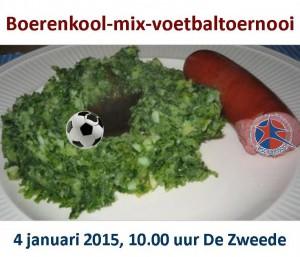 boerenkool040115